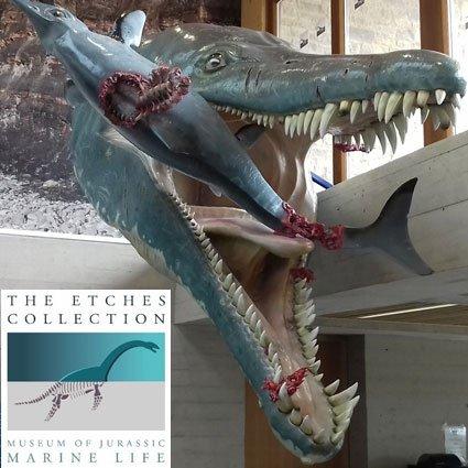October 2021 Half Term at The Etches Museum, Wareham Dorset