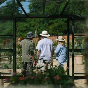 Visit-Wareham's-secret_garden